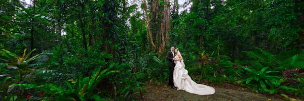 Misty Mountains - Fig Tree Wedding